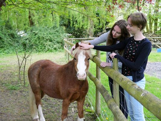 ... aber mit Pony!