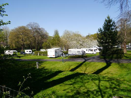 Campingplatz unter strahlend blauem Himmel