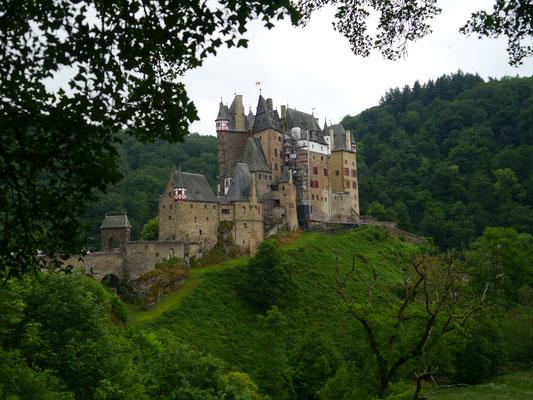 Burg vom Waldweg aus gesehen