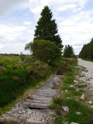 Alter Holzsteg neben Schotterweg
