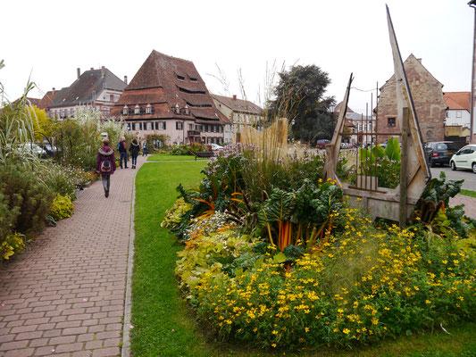 Im Zentrum von Wissembourg mit dem Maison du Sel (Salzhaus) von 1450