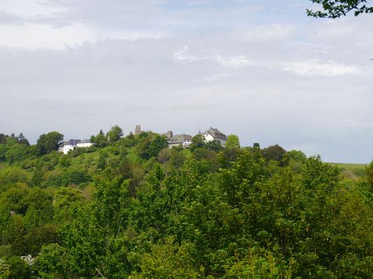Blick auf die Burg von der Staumauer aus