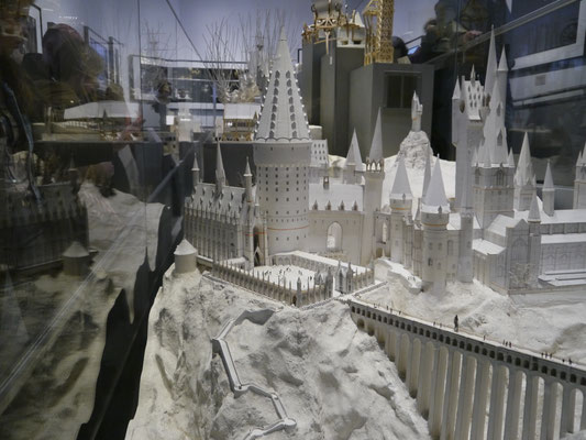 Hogwarts und Umgebung