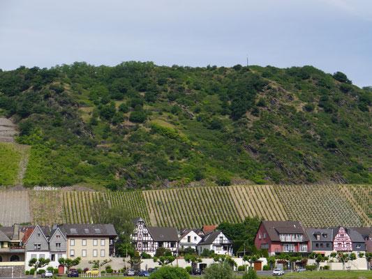 Leutesdorf mitten in Weinhängen