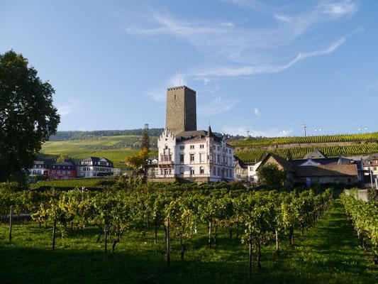 Boosenburg mit romanischem Turm