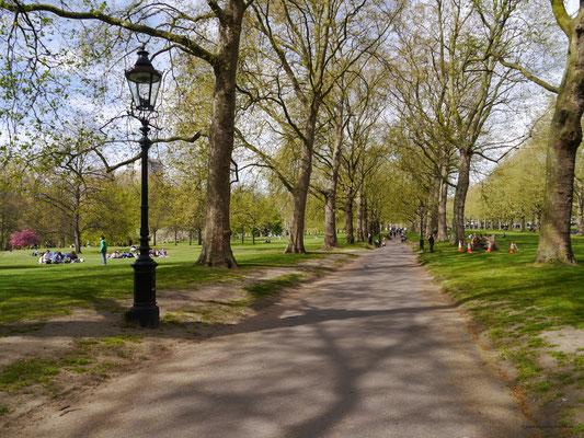 durch den Green Park Richtung Piccadilly