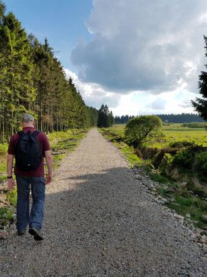 Wald und Moor, in der Mitte Herr Fernschreiber