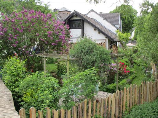 üppig bewachsene Gärten