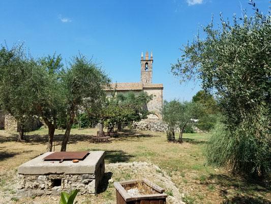 Dorfkirche zwischen Olivenbäumen