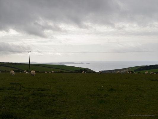 Aussicht auf die Küste Cornwalls ganz in der Nähe des Stellplatzes