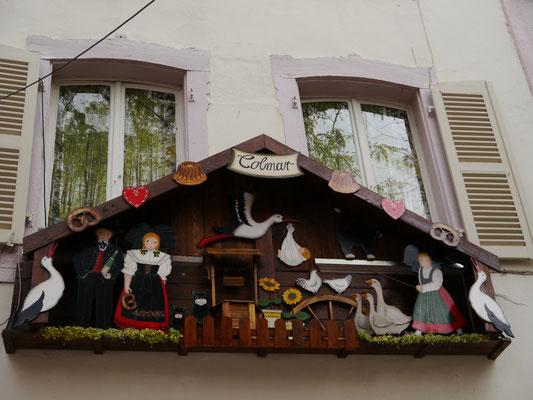 Störche - die Wahrzeichen des Elsass'...