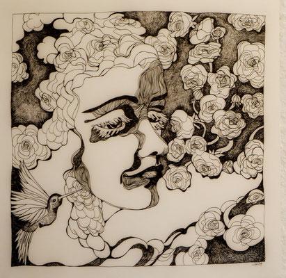 Ranunkelmunkeln 42 x 42 cm Tuschestift auf Papier