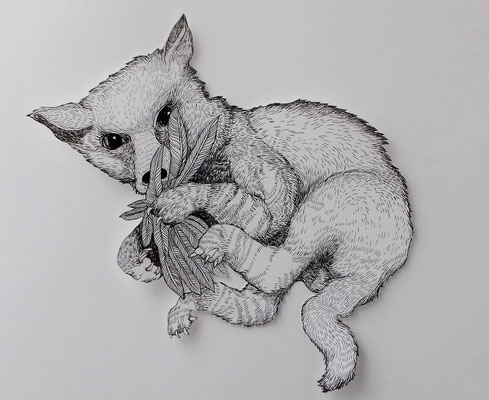 Der kleine Fuchs ca. 45 x 45 cm Tuschestift auf Papier