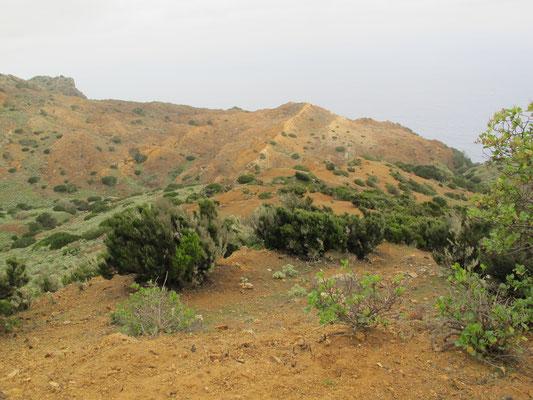 Mirador Punta Alcalá Nordseite von La Gomera, oberhalb von Los Órganos