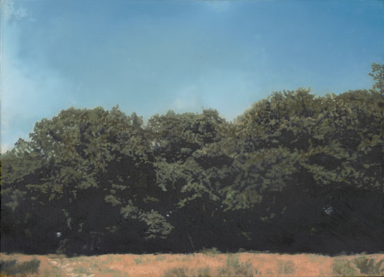Bäume, 1987, Albertina, Wien. Dauerleihgabe aus österreichischem Privatbesitz; © Gerhard Richter