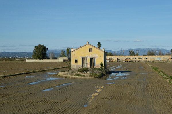 Ebrodelta - Reisanbaugebiet