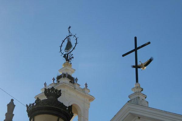 - nach dem Rundflug zurück, wieder zum Kreuz