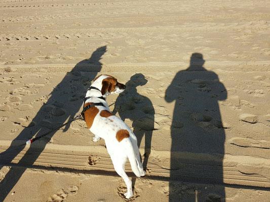 - Strandspaziergang zu Dritt