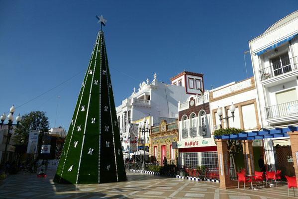 """- der schöne """"Plaza de las Flores"""""""