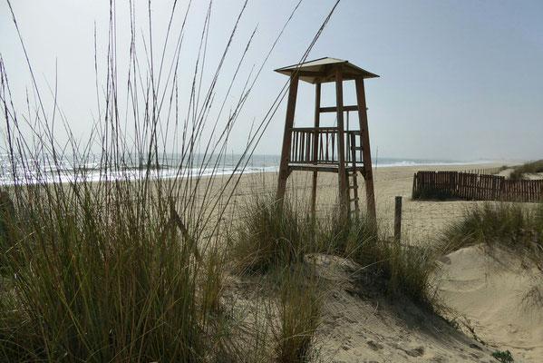 - einsam und verlassen | Meeresrauschen als Hintergrundmusik