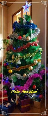 - Weihnachtsbaum in der Rezeption