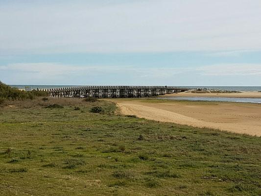 - die Holzbrücke zum Strand