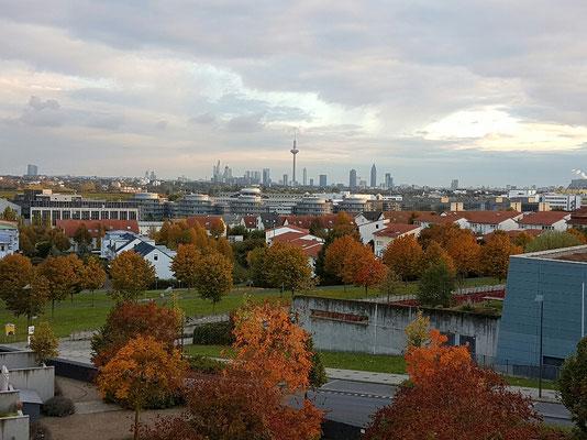 - zurück in Frankfurt (Bild vor der Abfahrt)