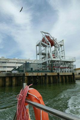 - die Rettungsboote