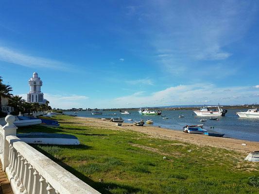 - ein Teil des Hafenbeckens | Ebbe