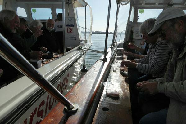 - die gemeinsame Pause | Boote in Reih und Glied