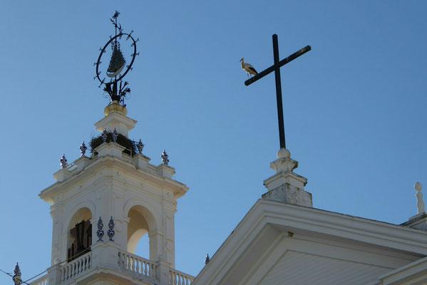 - er hatte sich auf's Kreuz niedergelassen