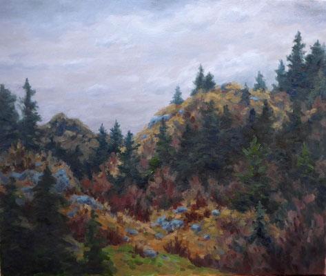 In den Hügeln, nach dem Regen   Öl auf Leinwand   50 x 60 cm