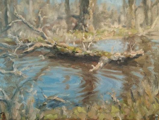 Sumpfgebiet an der Wertach  | Öl auf Leinwand | 30 x 40 cm | 320€
