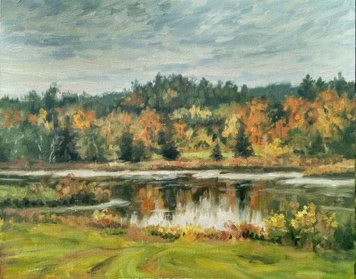 Herbst am See bei Markt Wald  | Öl auf Leinwand | 40 x 50 cm | 480€