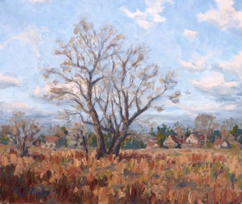 Ein Baum im Felde   Öl auf Leinwand   50 x 60 cm   Verkauft