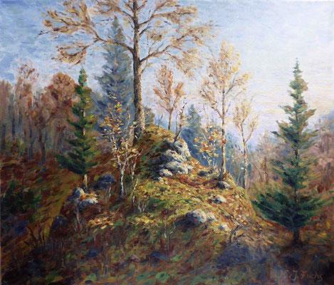 Hügel im Abendlicht   Öl auf Leinwand   60 x 70 cm