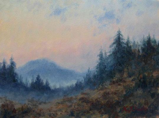 Tannenwald in der Dämmerung   Öl auf Leinwand   40 x 50 cm