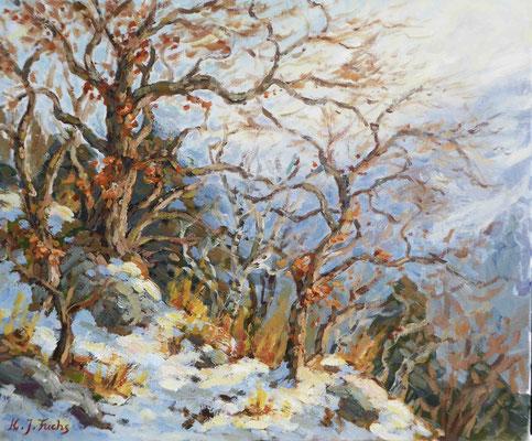 Früher Schnee   Acryl auf Leinwand   50 x 60 cm