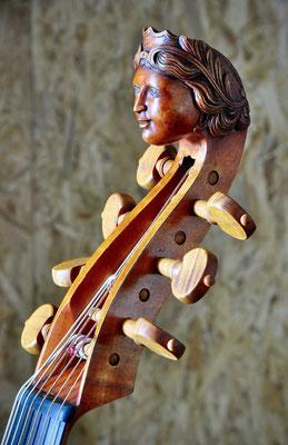 small Colichon, female head - violworks