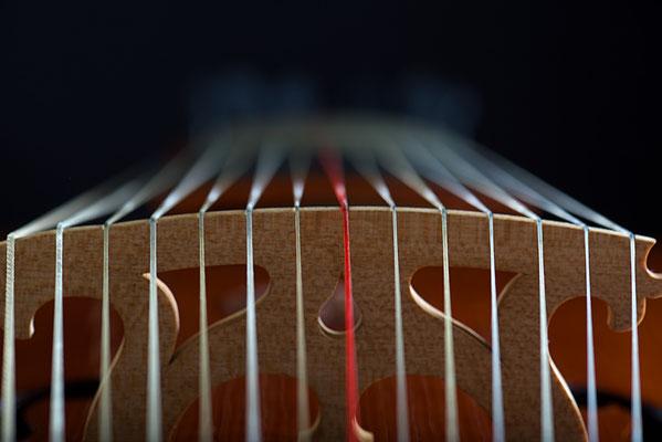 strings Lirone - violworks