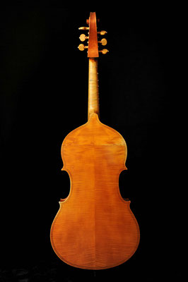 Violone after P. Maggini, rear view - violworks