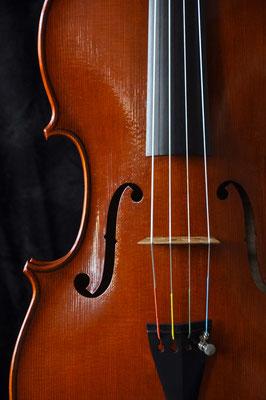 Andrea Guaneri viola, front detail - violworks