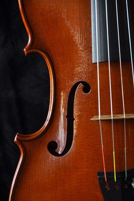 Andrea Guaneri viola, soundhole - violworks
