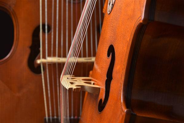 bridge detail, 2 lirone - violworks