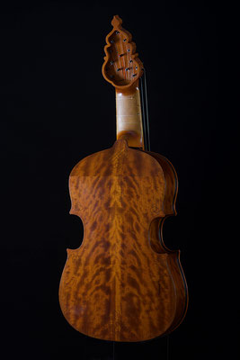 Lirone, figured American cherry back - violworks