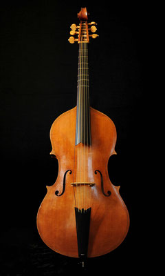Violone after P. Maggini - violworks
