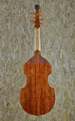 small Colichon, back view - violworks