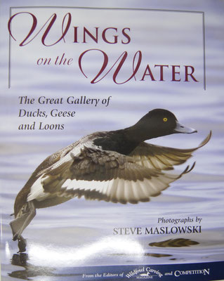 58:Wings on the Water