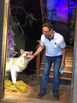 Kay und der böse Wolf