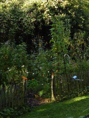 Bauerngarten in der Sonne